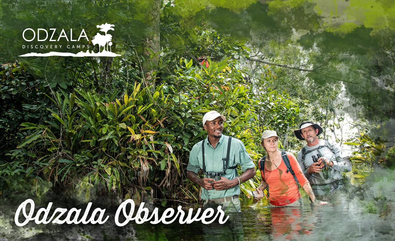 Odzala Observer – Newsletter Issue 13 – Part 2